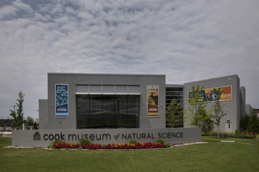 Cook Museum of Natural Science (2)