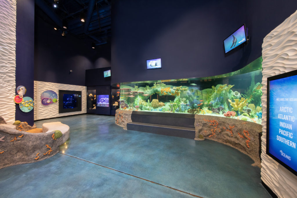 Cook Museum of Natural Science (7)